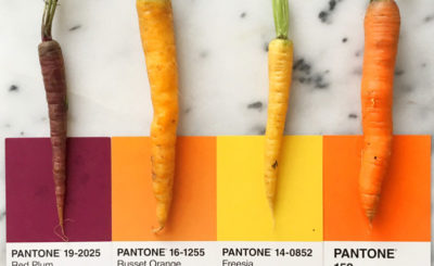 χρώματα Pantone